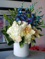 Blue Orchid Hydrangea