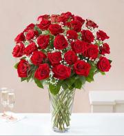 Loved red roses 36