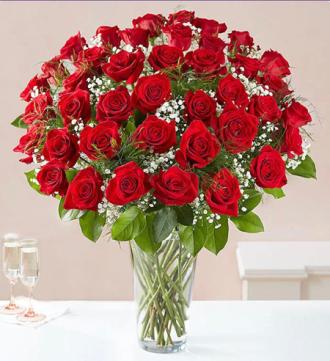 Loved red roses 48