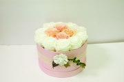 Pink Smooth Touch Round Box