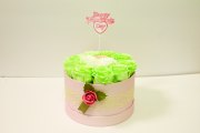 Light Green Smooth Touch Round Box