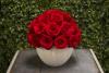 Red Rose Ball White Base Preserved Roses