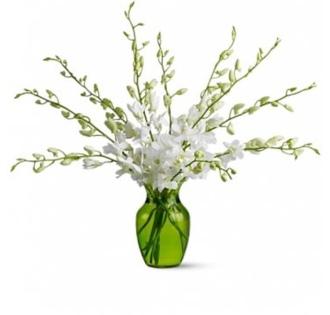 Orchid Opulence Bouquet
