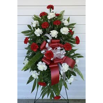 RED WHITE CARNATION SPRAY
