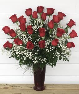 Valentines Roses 2 Dozen
