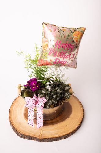 The Botanical Beauty Basket by Daisy a Day