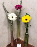Single Gerbera Daisy with Accent Greens