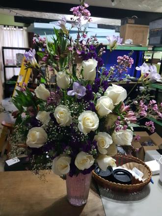Classica white roses