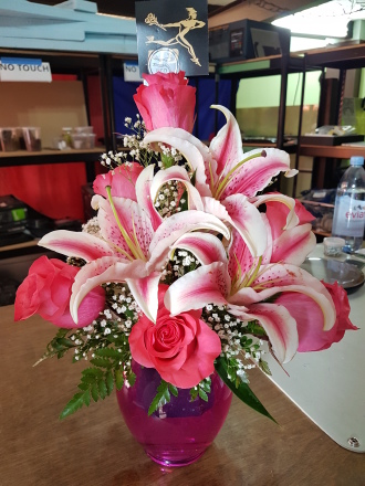 Stargazers in Pink