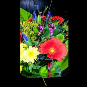 HF Carnival Bouquet