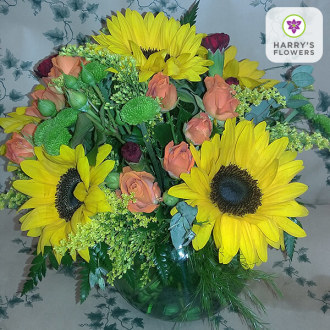Sunflower Glow Arrangement