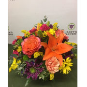 Joyful Blooms Arrangement