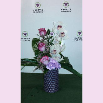 Orchid High Style Arrangement