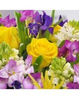 Spring Mix Arrangement Designer Choice