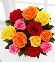 Cash and Carry Dozen Roses