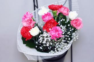 Large Carnation