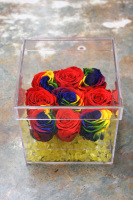 Rainbow Everlast Rose Box