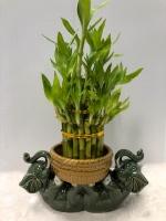 Lying Elephants Bamboo Planter