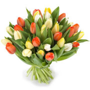 Romantic Tulip Bouquet