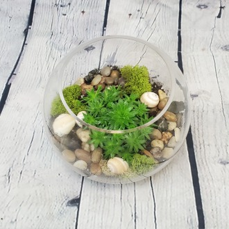 SOLD OUT!!! Succulent & Cacti Terrarium