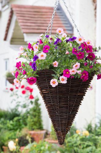 Combination of Flowers in Hanging Cones