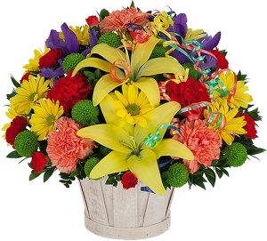 TF835 CELEBRATE FLOWER BASKET