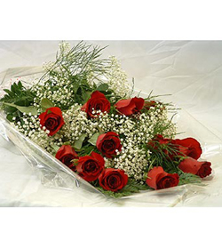 12 Roses Wrapped with Baby's Breath