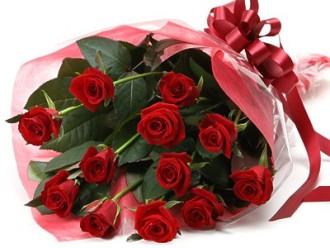 1 Dozen Long Stem  Roses Cello Wrapped
