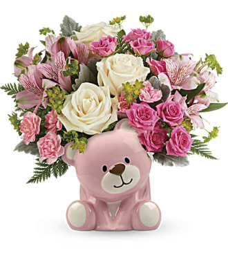 The Precious Pink Bear