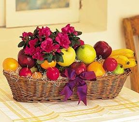 Fruit & Flowers
