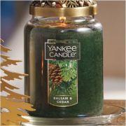 Yankee Candle Balsam & Cedar