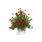 CARISMA FLORISTS®  Carnations Container