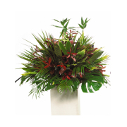 CARISMA FLORISTS® Exotic All Green Container