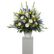 CARISMA FLORISTS® White Daisies Container