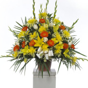CARISMA FLORISTS® lilies and daisys