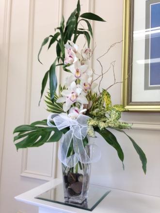 Carisma Florists® Squisito White Cymbidium Orchid