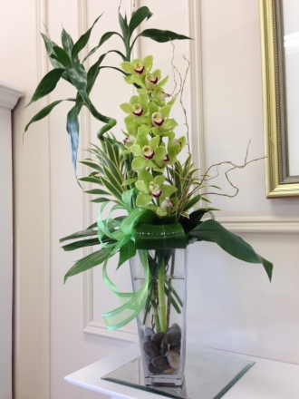 Carisma Florists® Squisito Green Cymbidium Orchid