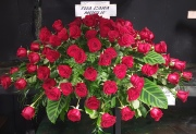 Cushion of 100 Red Roses