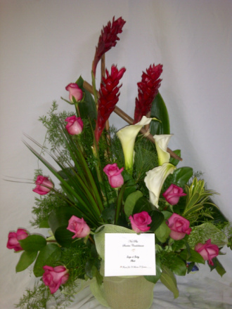 Corbeille roses, callas et gingembre rouge