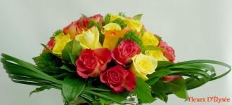 lumière de roses