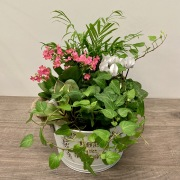 'Live Sweetly' Mixed Planter