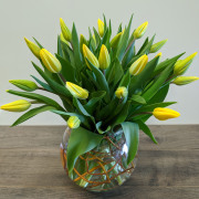 24 Yellow Tulips & Curly Willow in Bubble Bowl