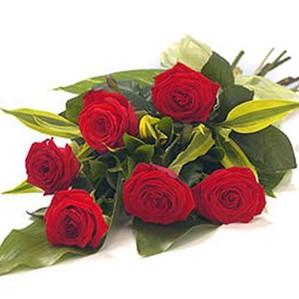 1/2 Dozen Favorite Red Roses