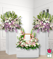 Beretania's Funeral Package 1031