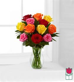 Beretania's Mixed Color Short Stem Roses (colors vary)