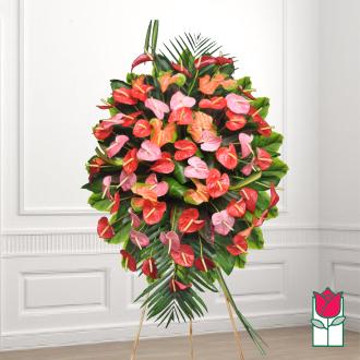 Beretania\'s Manoa Tropical Wreath