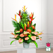 beretania florist kewalo tropical arrangement