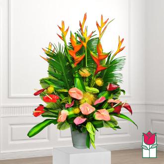 beretania florist citron tropical arrangement