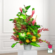 Beretania's Hausten Tropical Bouquet