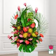 beretania florist isenburg tropical arrangement